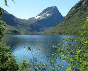 vedfjorden